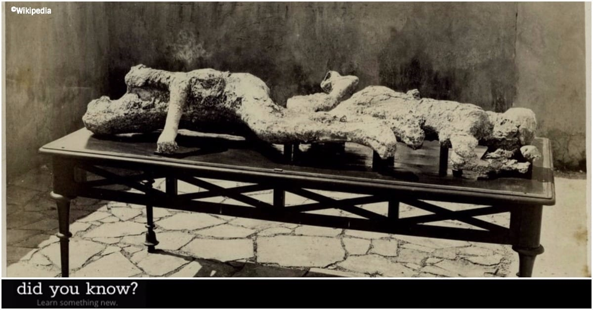 8 Facts Frozen In Time With The Bodies At Pompeii