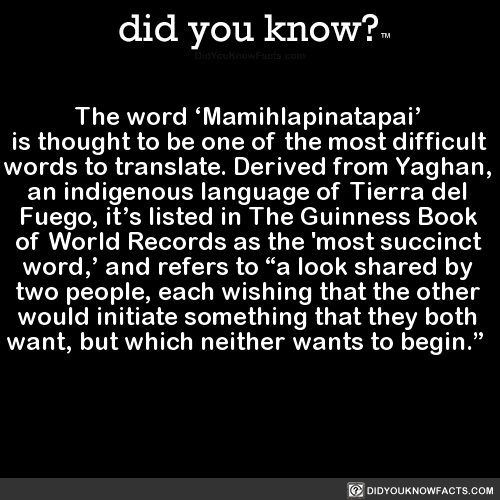 Image result for mamihlapinatapai